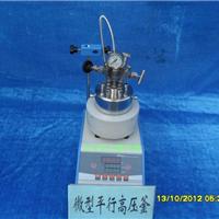 供应微型磁力高压反应釜