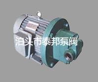 供应RYB电动内啮合齿轮泵信赖的选择