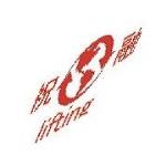 象牌环链电动葫芦上海代理公司
