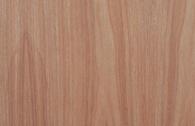 巴西檀木饰面板-大王椰