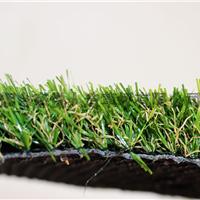供应森悦人造草坪 2.5CM高四色加密仿真草坪