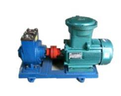 供应北京滑片泵-HZB型滑片自吸泵生产厂家