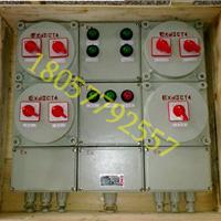 防爆动力检修箱 BXX51-2/3/4/6检修箱较低价