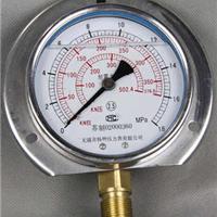 供应径向带边耐震压力表