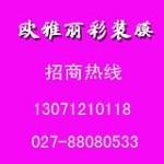 武汉欧诺丝环保装饰材料有限公司