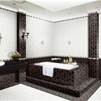 内墙砖―300X450mm XAL34010
