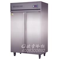 上饶不锈钢冷藏柜哪有卖欧雪冷柜的价格多少
