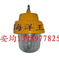 供应深圳海洋王BPC8730防爆平台灯