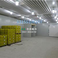 低价冷库工程标准医药冷库安装