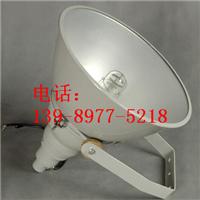 供应海洋王NTC9210防震投光灯