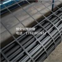 安平土工格栅厂家生产路基钢塑土工格栅 钢塑土工格栅厂家