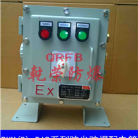 供应BXM(D)-DIP系列粉尘防爆配电箱(DIP)