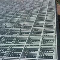 供应电焊网,电焊网片,各种规格样式都有