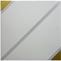 供应彩釉工程铝天花板600*600