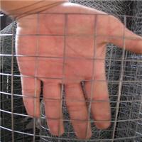 大丝养殖镀锌焊接网经济耐用养殖业的新宠儿